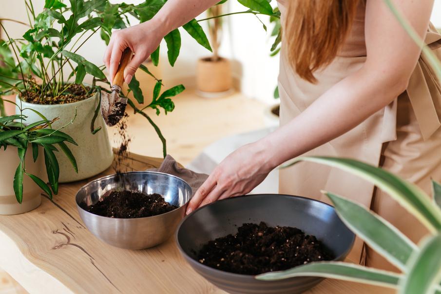 Aprende a hacer composta en casa