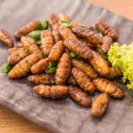 Insectos-prehispánicos